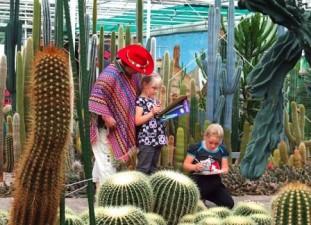 indianen uitje cactus oase