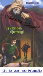 vikingen boek